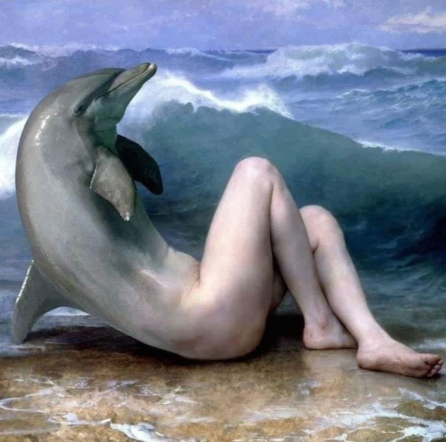 Nude girl sunbathing and admiring dolphins on the vector image